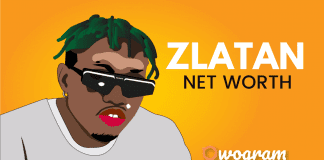 What is zlatan Ibile net worth