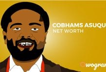 cobhams net worth