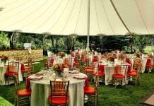 Full party rental business service ideas in Nigeria