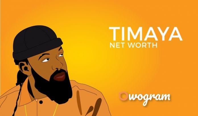 Timaya Net worth