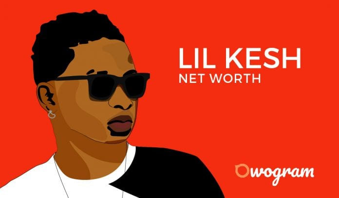 Lil Kesh Net Worth and Biography