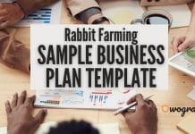 Sample Rabbit Farming Business Plan Template