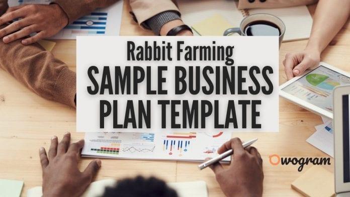 Sample Rabbit Farming Business Plan Template