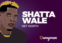 Shatta Wale net worth and biography