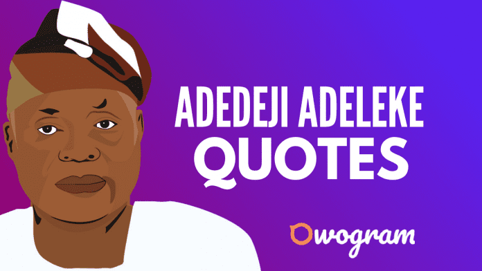Adedeji Adeleke Quotes About Success and Life