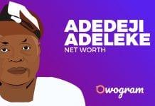 Adedeji Adeleke net worth