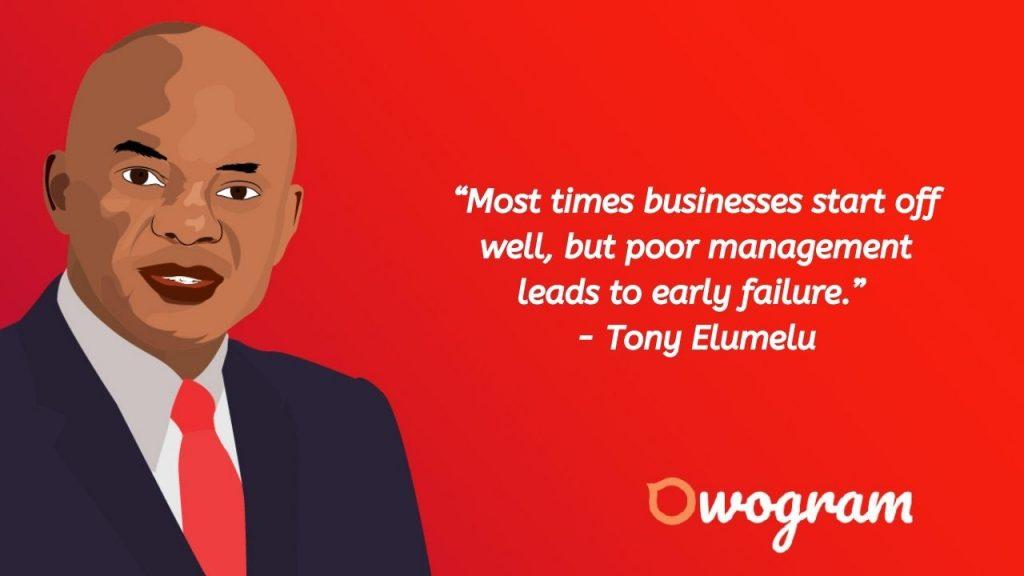 How Tony Elumelu makes his money