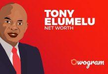 Tony Elumelu Net Worth and Biography